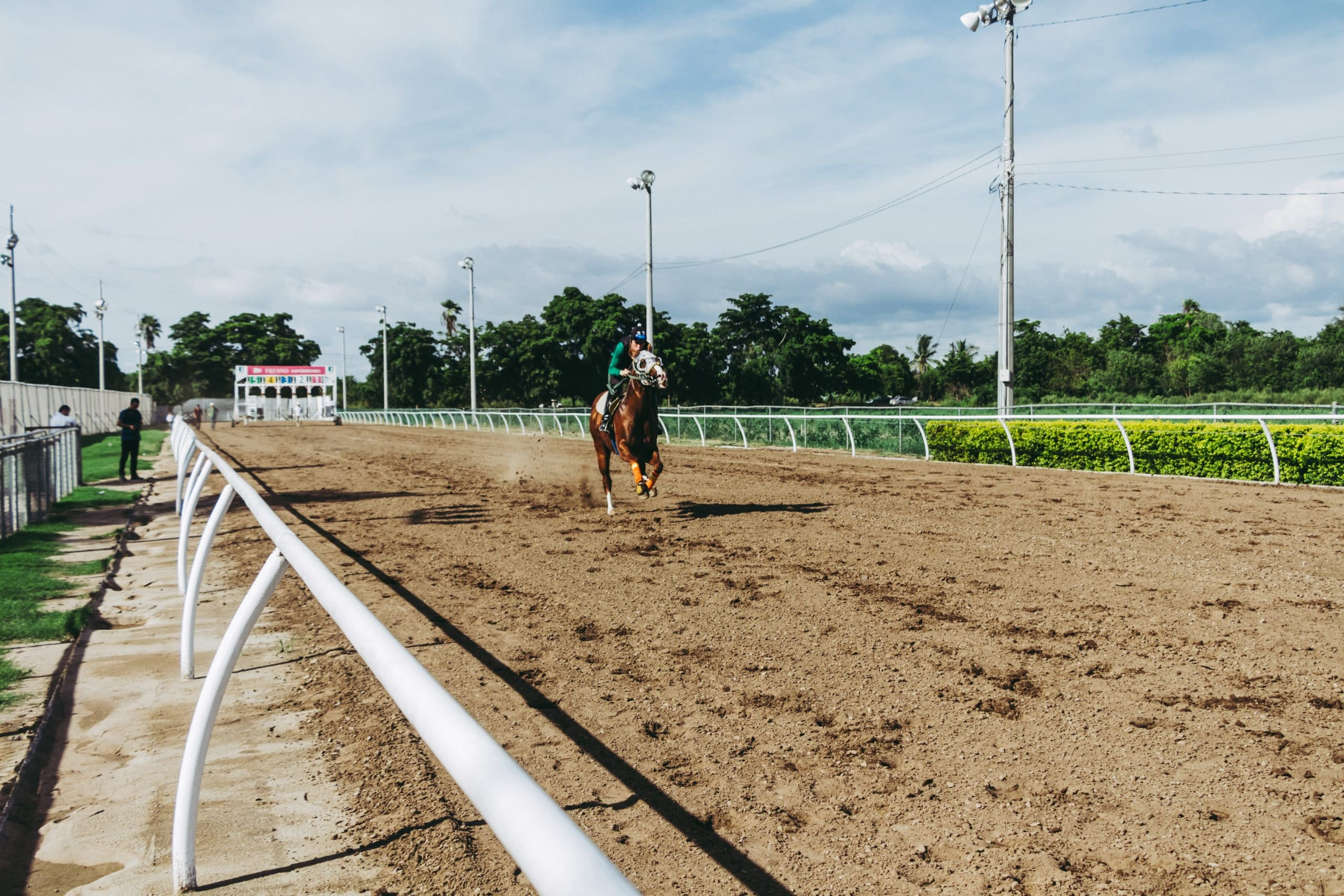 夏競馬の開催地と各競馬場の開催期間について